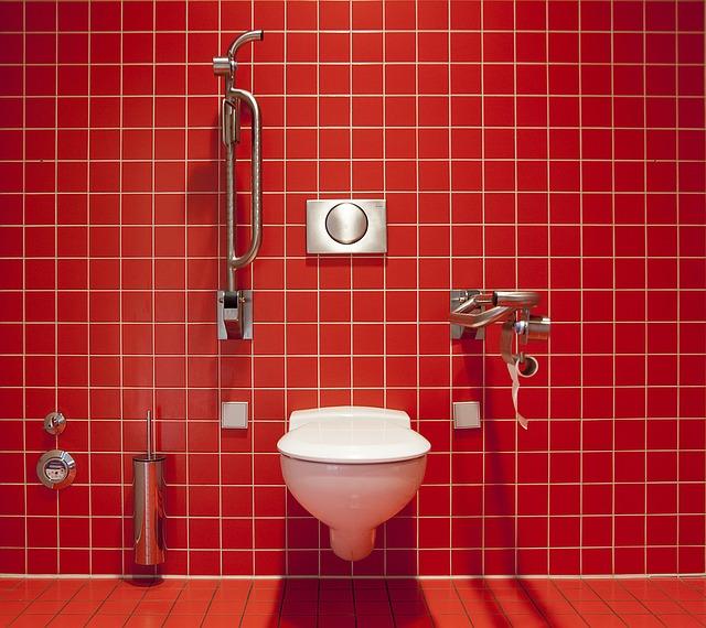 toilet leaking cistern , leaking toilet
